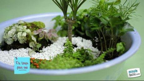 Un pot de peinture et sur les montagnes russes - Comment amenager son jardin soi meme ...