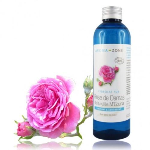 catalogue_hy_rose-damas_4